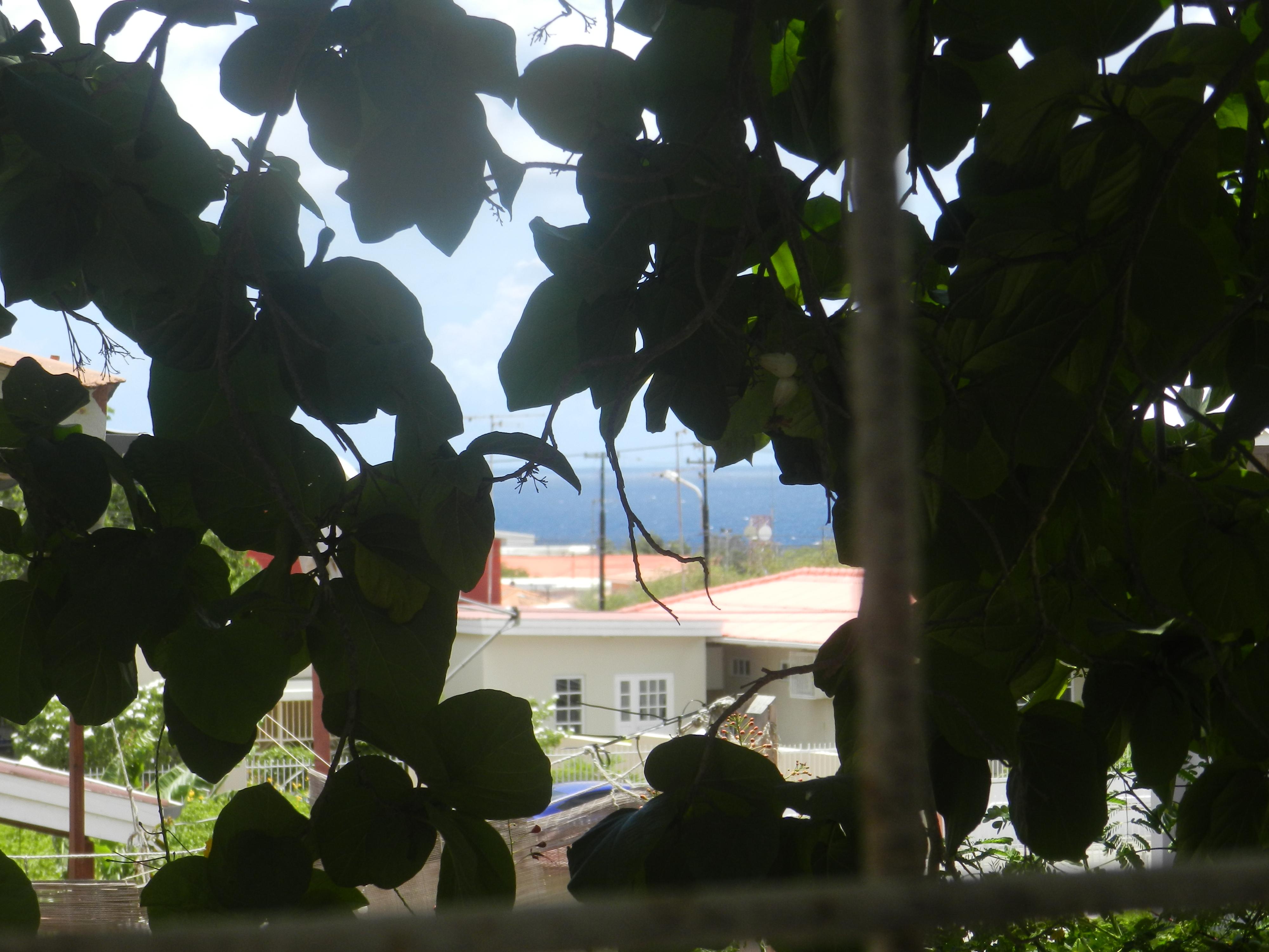 Uitzicht zee Studentenhuis Curacao