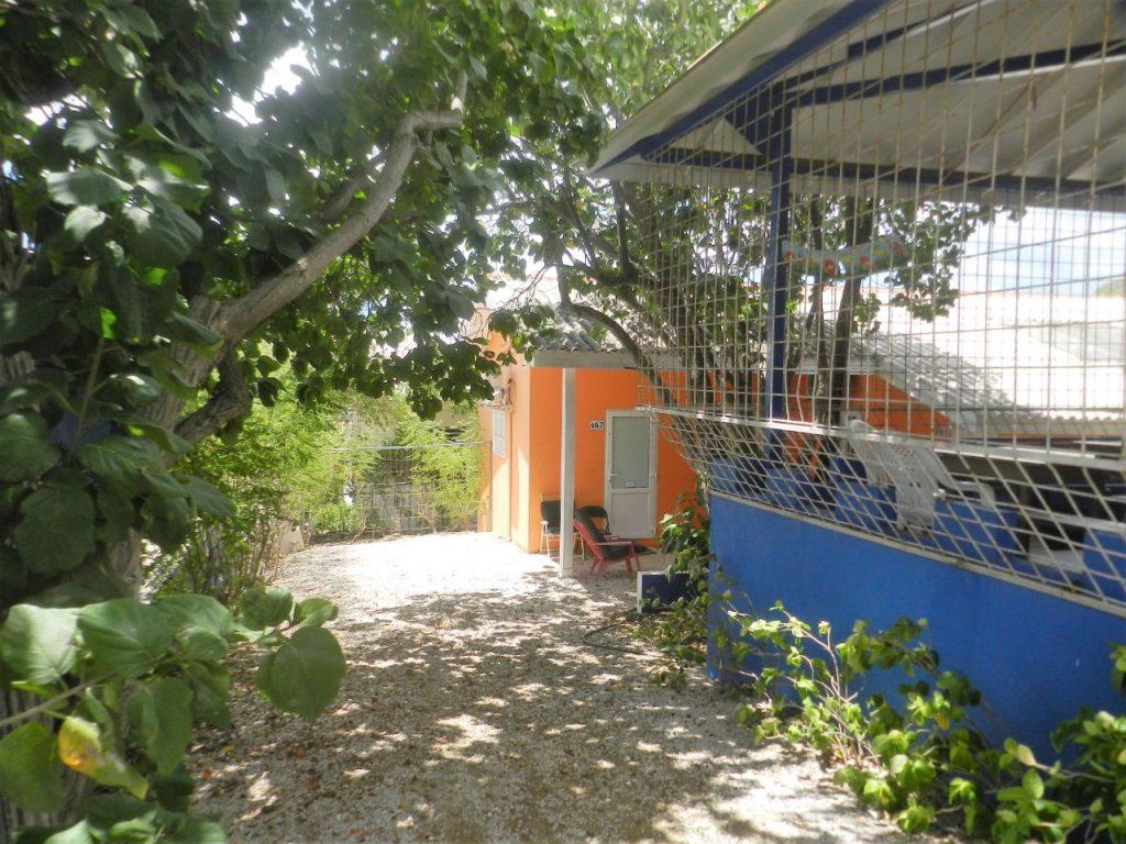 Studentenhuis Curacao tuinfoto